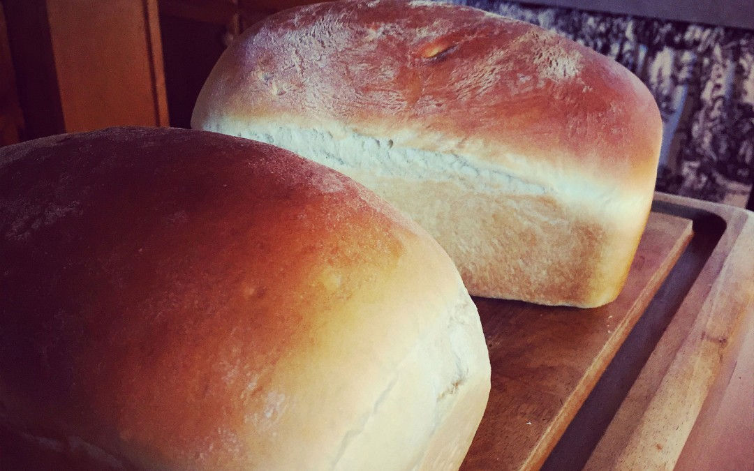 Back to Basics…. Baking Bread