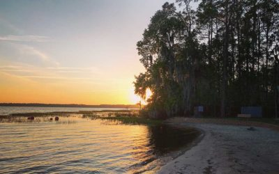 Ocean Pond Campground in Florida's Osceola National Forest
