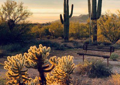 Lost Dutchman | Phoenix, AZ