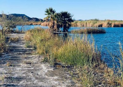 Lake Mittry | Yuma, Arizona